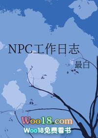 NPC工作日志